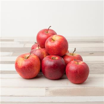 Armagh Gala Apples - Small