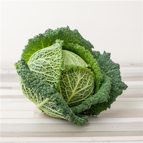 Buy Savoy Cabbage Farm Next Door