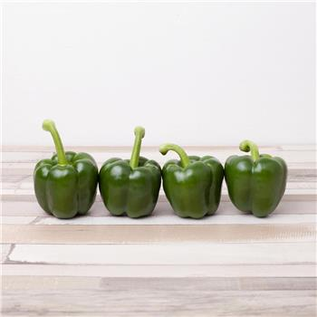 Green Peppers (PL)